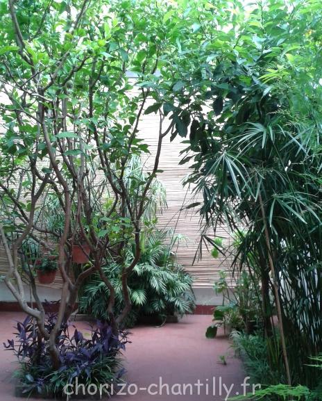 Joli patio chez notre hôte à Via Reggio... malheureusement, les moustiques ne nous ont pas permis d'en profiter comme il se doit.
