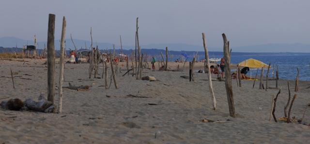 La plage publique de Via Reggio et ses piquets de bois flottés, une découverte surprenante.