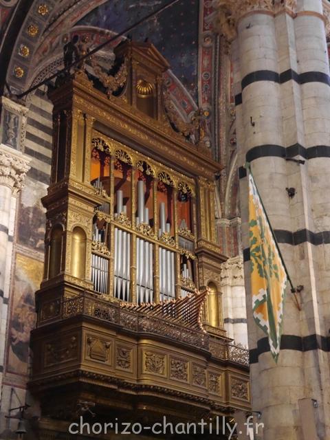 Orgue Duomo sienne