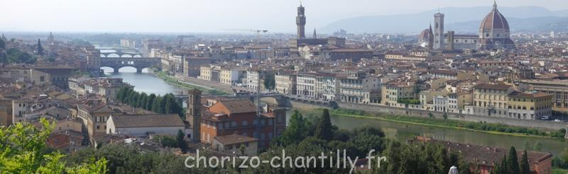 Vue panoramique Florence