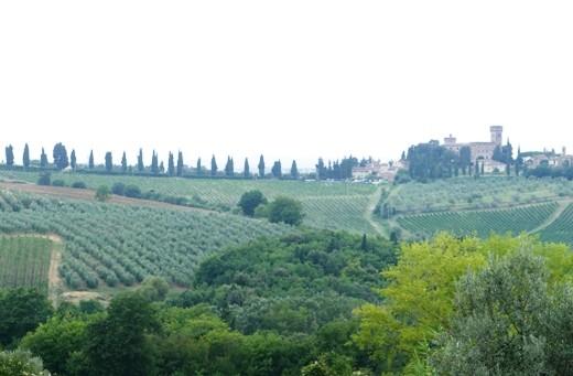 Panorama vers Fezzana 3